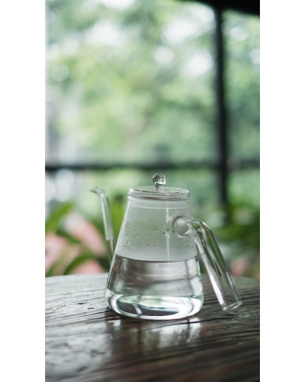Gooseneck Kettle 500 ml