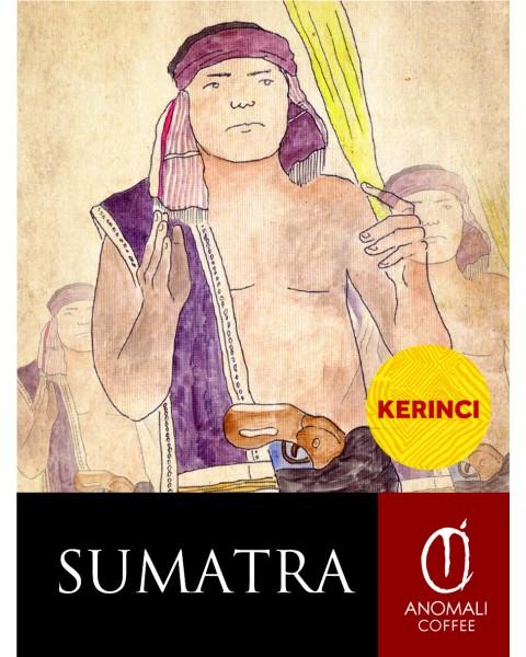 Sumatra Kerinci Coffee Beans