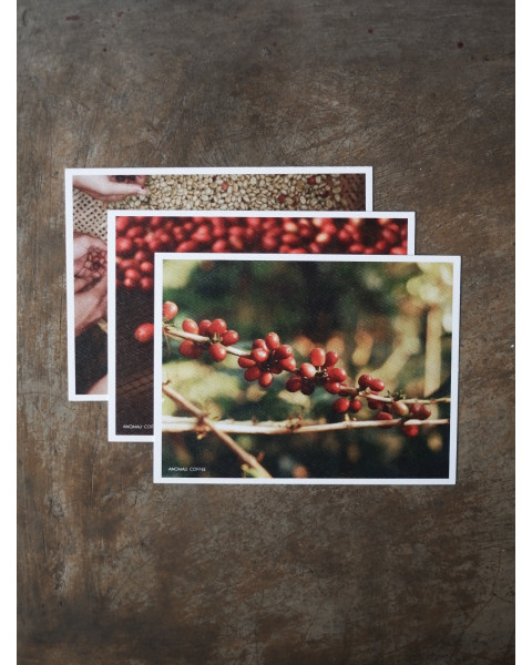 Post Card Anomali Coffee (Package 3 pcs)